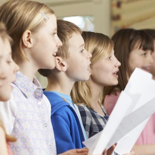 bigstock-Group-Of-School-Children-Singi-87641861